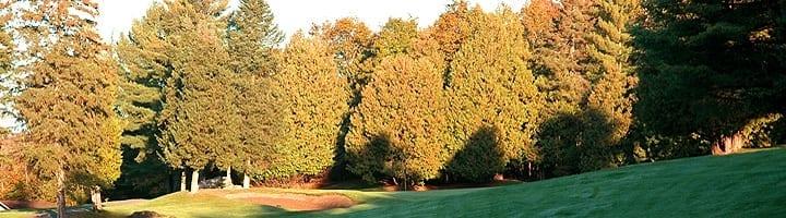 Hotel Lac Carling Club et parcours de golf Laurentides Lachute Trou #8 photo